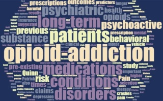 long term opioid addiction